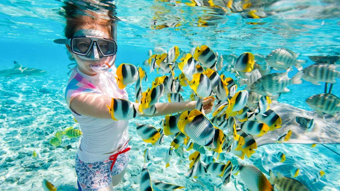 Best Snorkeling Spots in Egypt should be included in your Egypt travel package