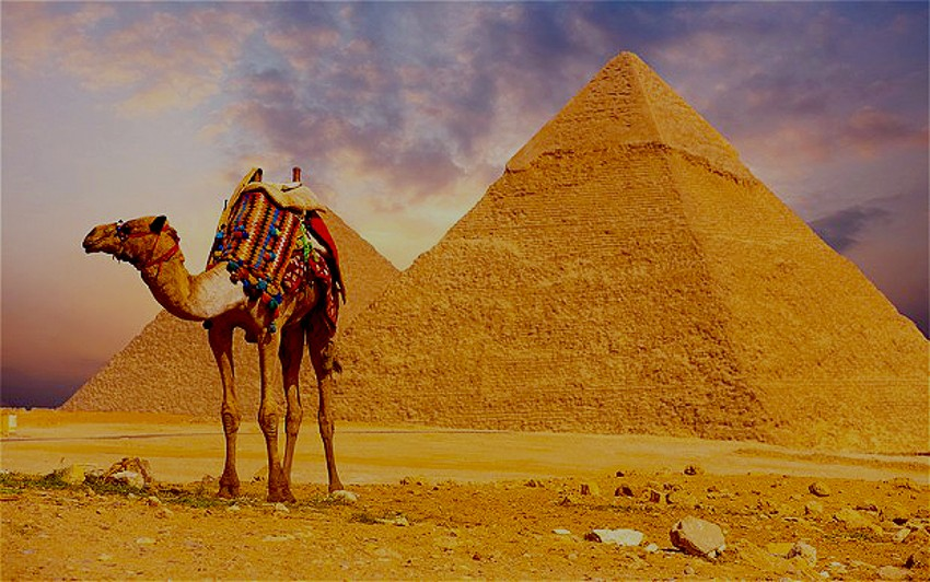 Signature Egypt And The Nile 2020-2021
