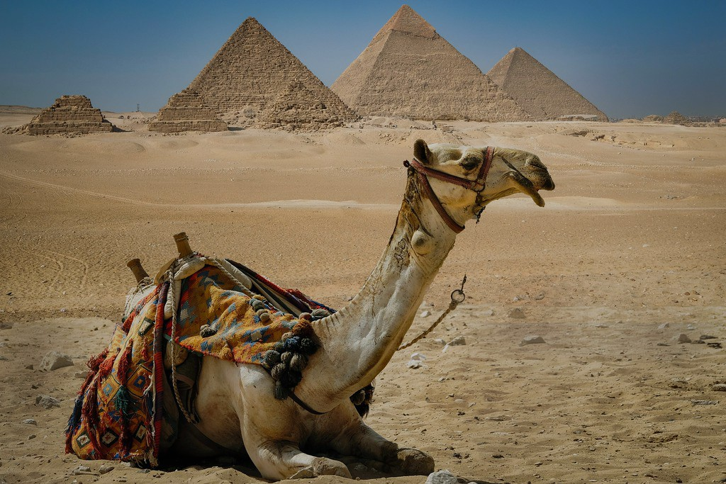 Top Attractions Of Cairo From Sharm Sheikh By Air