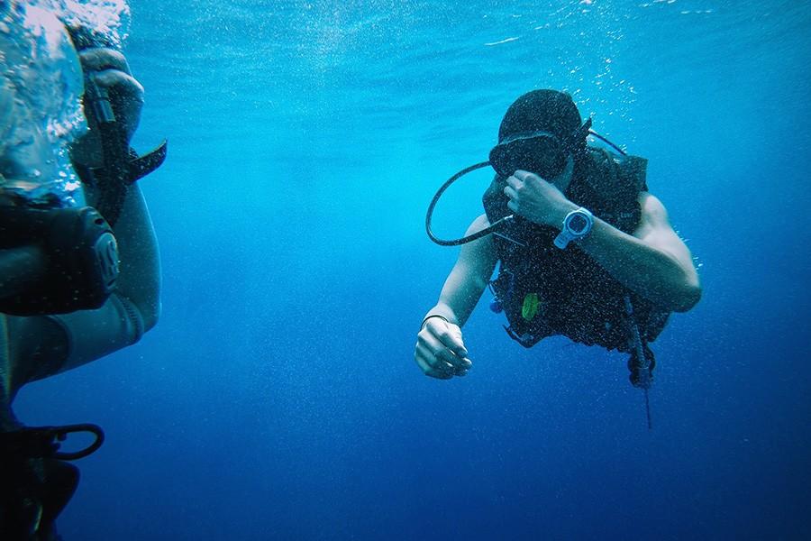 diving in ras mohamed