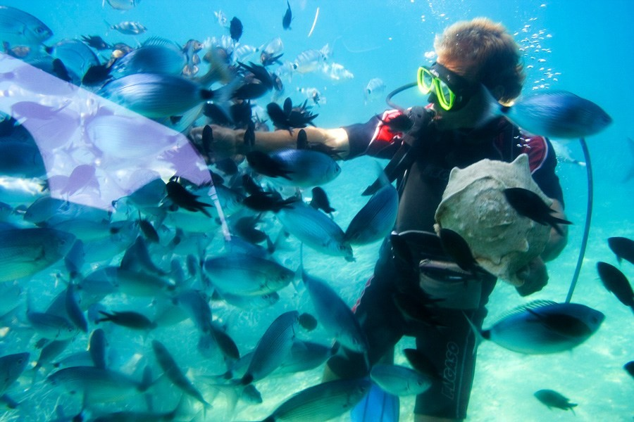 Red Sea Diving Tour