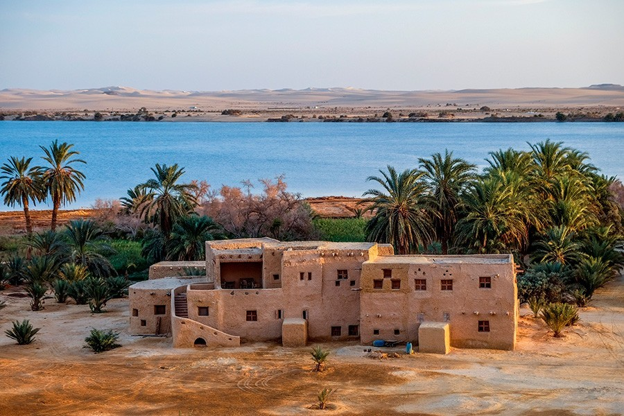 Safari in Siwa for 3 Days