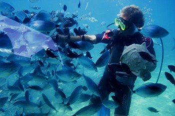 Underwater Diving in Hurghada, Hurghada day tours