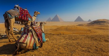 Pyramids, Mummies and Temples
