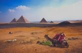 Egypt Experience Holiday 2021-2022