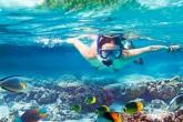 snorkeling at red sea