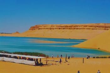 Al Fayoum Day Tour to Wadi Al Rayan and Lake Qarun