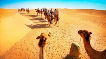 Dubai Deluxe Safari Tour