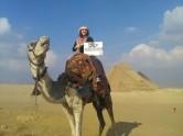 Giza Pyramids, Sphinx, Sakkara and Memphis Day Tour